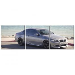 Obraz BMW 335i Coupe - Axion23